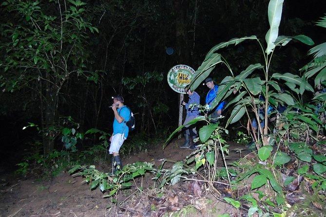 Nativos Corcovado Night Hike in DrakeBay