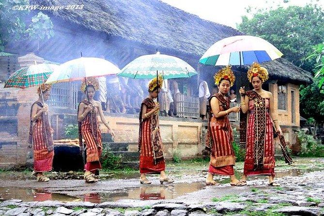 Private Full Day North Bali Tour - Kintamani Tour