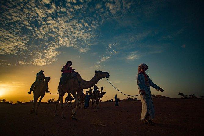 2-dages Zagora-tur fra Marrakech herunder Atlasbjergene, kameltrekking og ørkenlejr