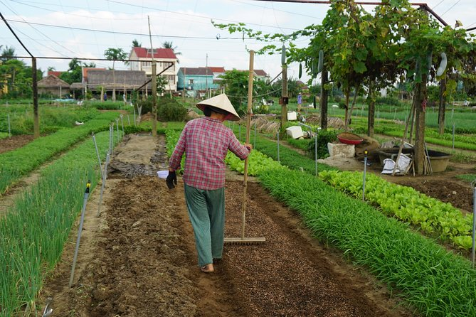 Tra Que Herb Village & Cooking Class