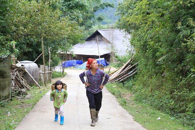 Halbtägige Tour zum Hoang Lien-Nationalpark und Sin Chai Village von Sapa aus