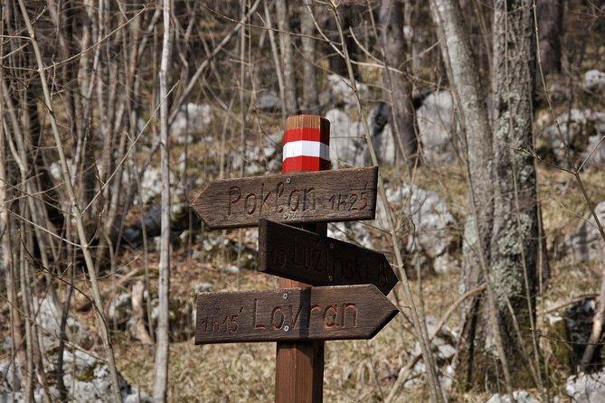 Ucka Mountain Hiking Tour