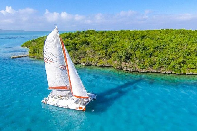 Private Charter Full Day Cruise: Île aux Cerfs