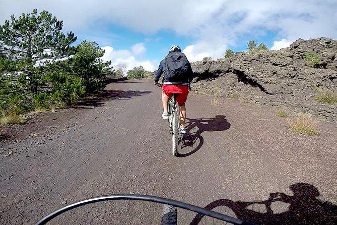 5-Hour Mount Etna Mountain Biking Private Tour from Catania