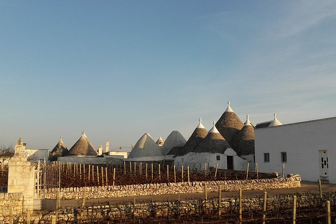 Full-Day Tour: Discover the Valle d'Itria(Trulli land) from BARI