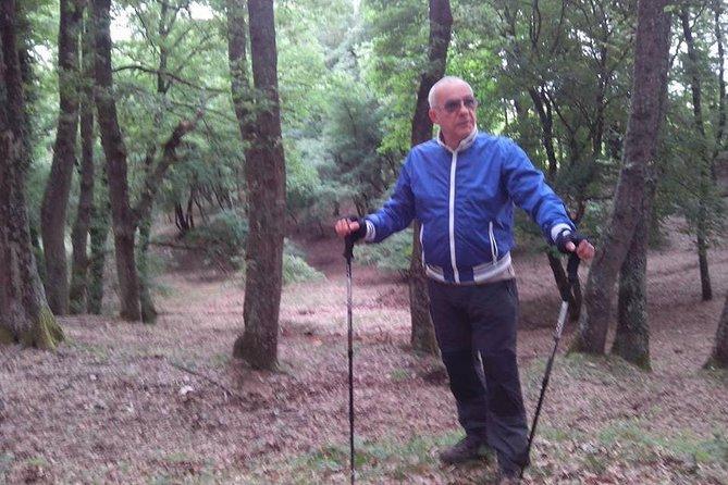 Excursión de Trekking en Gargano desde Bari o Foggia