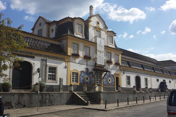 Tour privato - Tour dei vini di Arrábida e Sintra
