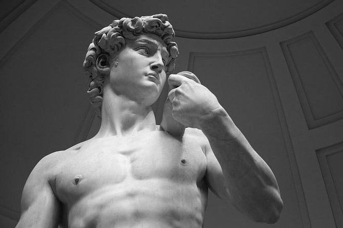The Accademia Gallery in Florence with your private guide