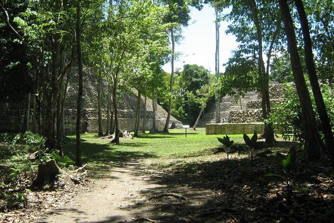 Full-Day Caracol Maya Temple and Pine Ridge Forest Reserve