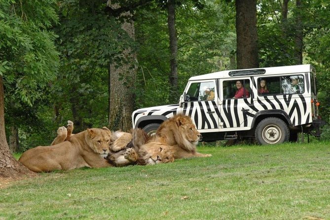 Private Return Transfer Thoiry Zoo Safari from Paris