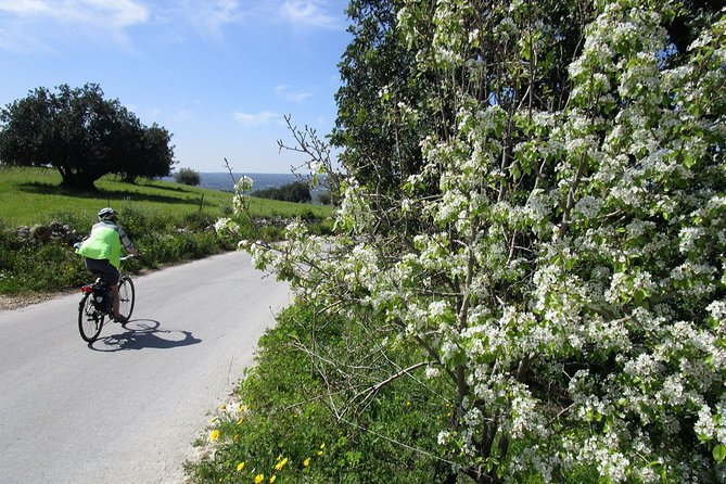 7-Day Sicily Bike Tour of the Baroque Hill Including Accommodation in 3 or 4 star Hotels