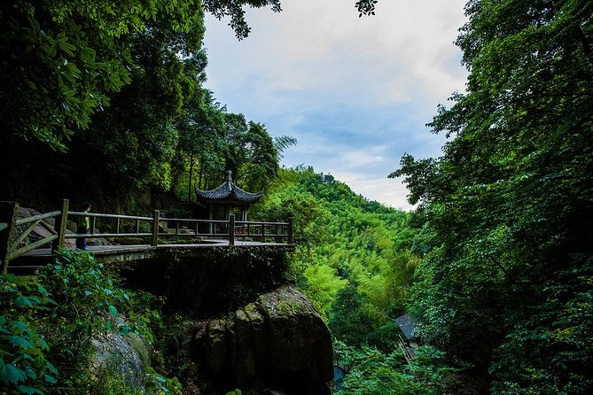 Plog and Hike Mount Mogan Nature Reserve – Guided Outdoor Tour from Hangzhou