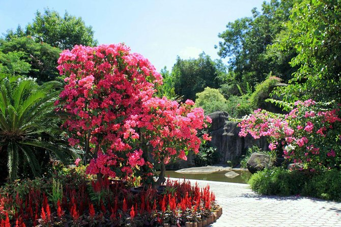 Xiamen Private Day Tour: Botanical Garden and Jimei School Village