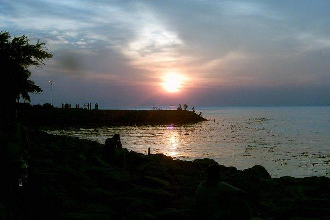 Tour Privado: Tour de Kochi que incluye redes de pesca chinas, sinagoga judía y palacio holandés