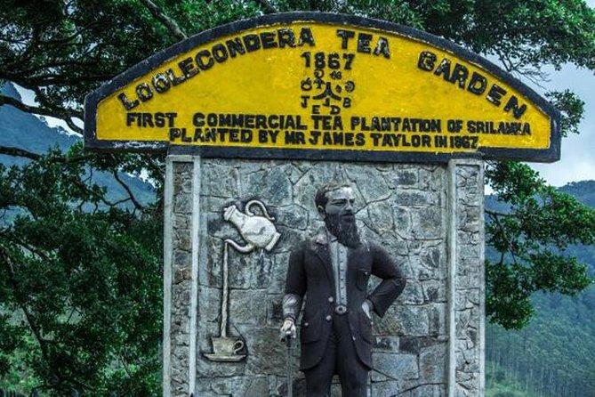 James Taylor's Tea Story Tour from Kandy