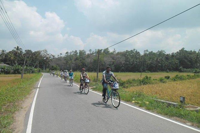 Excursion à vélo d'une demi-journée à la lagune et au village à Galle