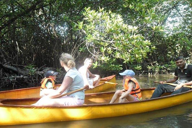 Excursion en canoë sur le lagon à Unawatuna