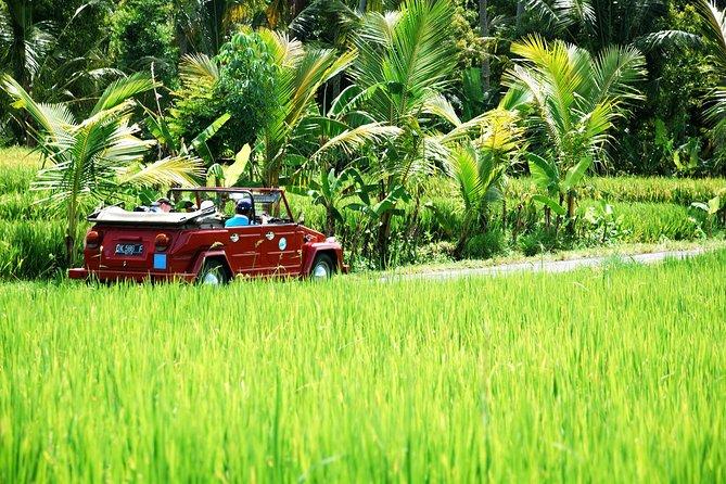 Full Day West Bali Discovery av VW