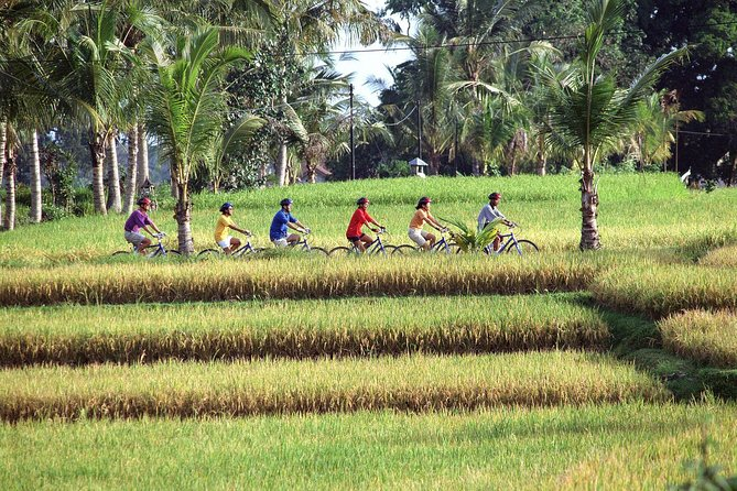 Full-Day Batur Village Cycling Tour