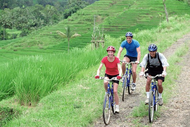 Ubud's Batur District by Bicycle