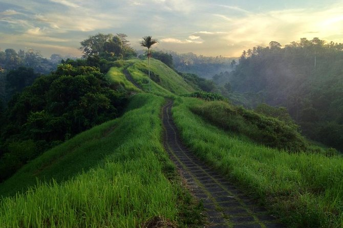 Half Day Bali Eco Walk