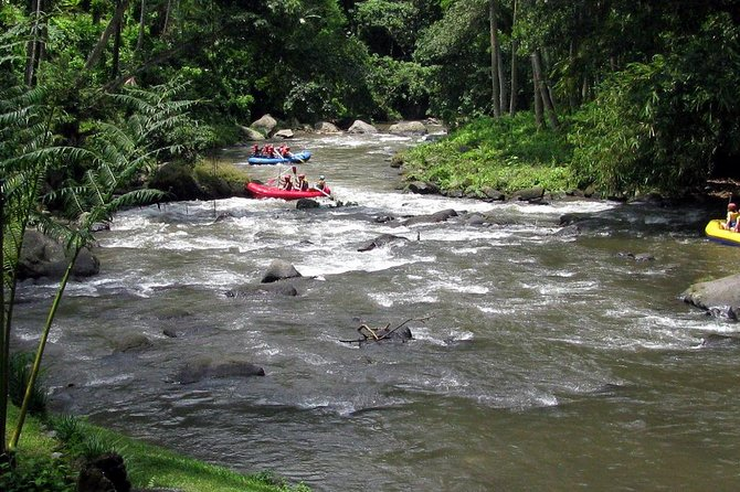Half Day Ayung River White Water Rafting