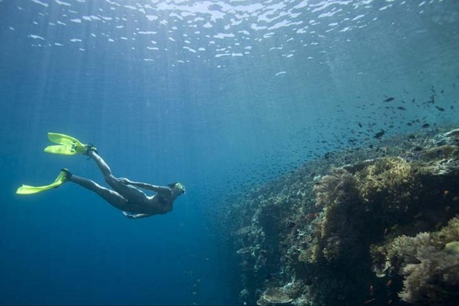 Full Day Snorkling at USAT Liberty and East Bali