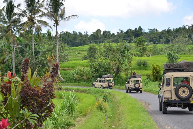 Full Day The Countryside of Bali