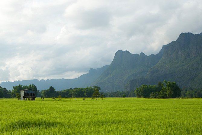 Half Day Rice Experience from Luang Prabang