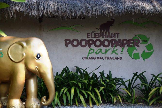 Un'iniziativa di riciclaggio a tema elefante