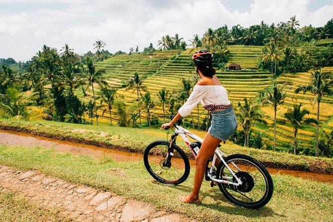 Full Day Jatiluwih Cycling by E-Bike