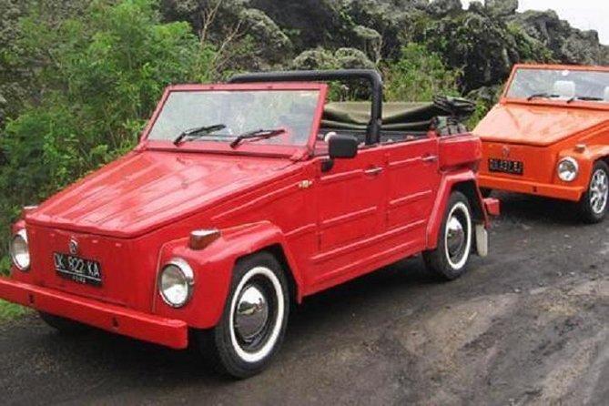 East Bali Discovery Tour af VW Safari