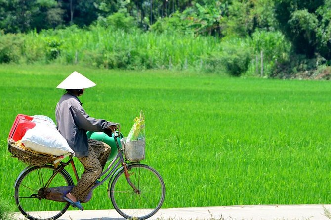 Glimpse of Hoi An Countryside by Bicycle