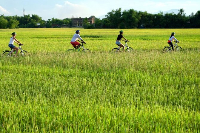 The Charm of Cam Kim by bicycle & visit workshops - Hoi An full day tour