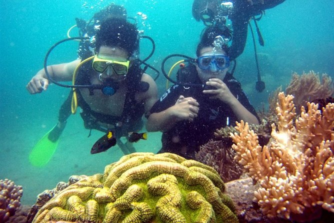 Nha Trang Half-Day Diving and Photo Underwater