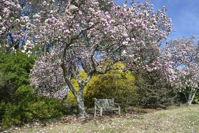Explore the Beautiful Botanical Garden's of Norfolk!