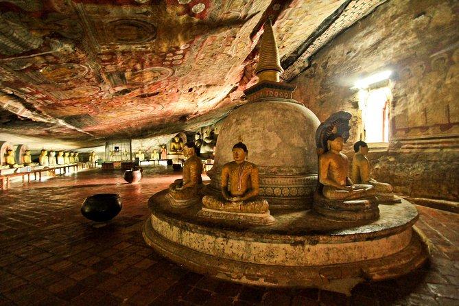 Tour de 5 jours au Sri Lanka