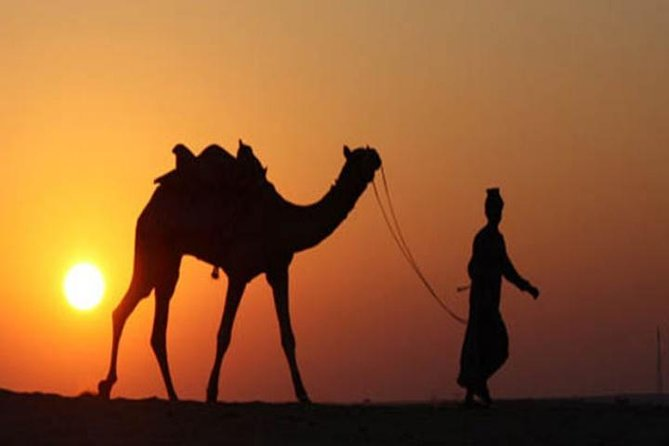 5-Night Private Rajasthan Tour from Delhi Including Jaipur, Jodhpur and Udaipur