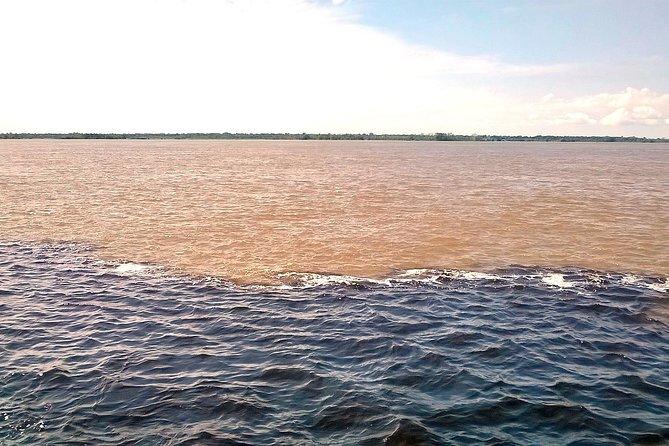 Excursão no encontro das águas e pelo Lago Janauari