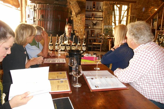 Private Tour: Wines of Burgundy Day Tour from Dijon