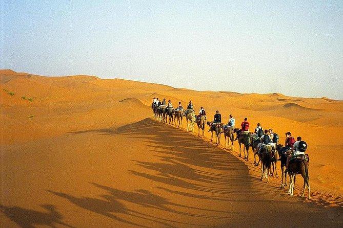 Overnatning i ørkentur fra Marrakech med kamelridning