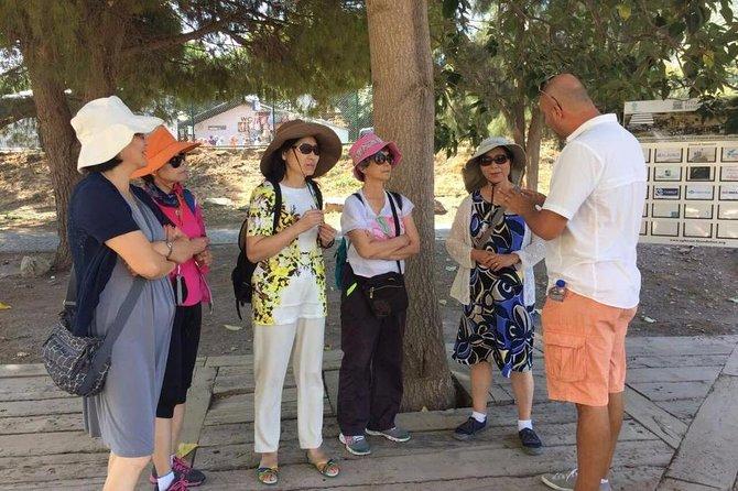 Full Day Ephesus Tour for Cruise Passengers