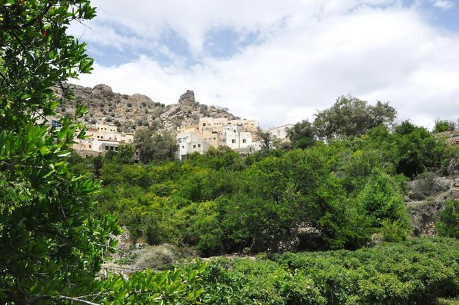 Private Full Day Jebel Akhdar Tour from Muscat
