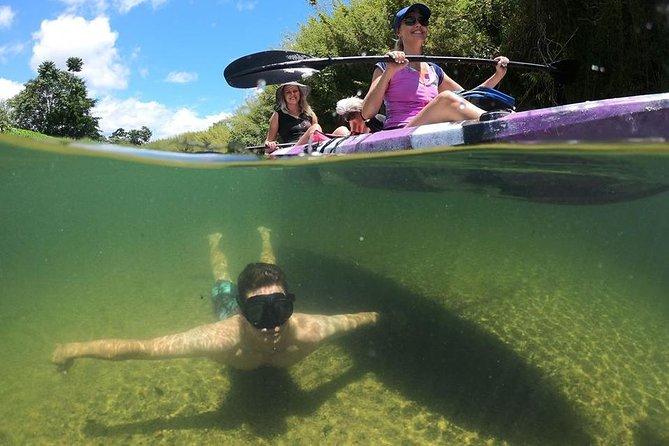 Babinda Half Day or Full Day Self-Guided Kayaking Experience