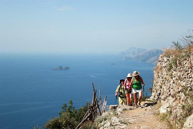 プライベートツアー:ナポリまたはアマルフィ海岸からの神々の道とポジターノの日帰り旅行