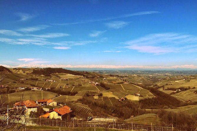 Piedmont Wine Tasting and Cellar Tour from Turin