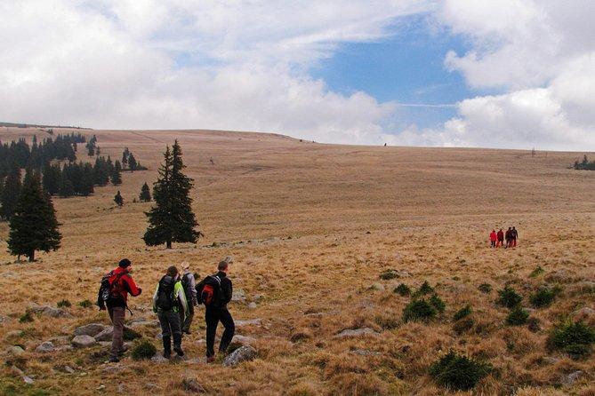 Hiking towards the main ridge