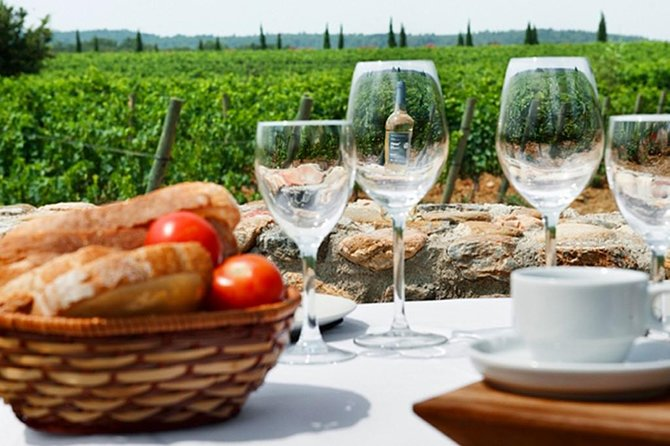 Wine Tasting and Brunch Small Group Tour from Girona