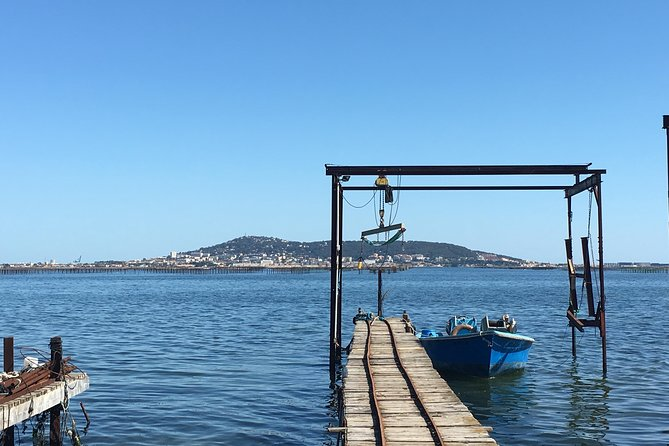 Tour of the regional specialities: wines, oysters, cheeses, olives, biscuits from SETE