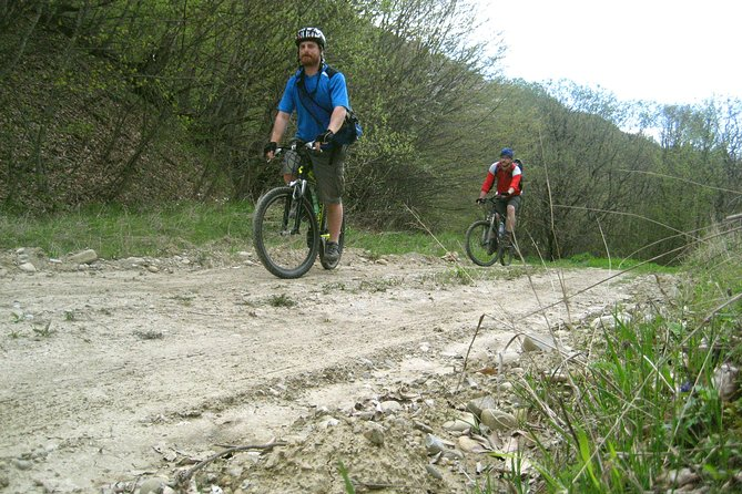 Private Cycling Tour in Tbilisi National Park from Tbilisi